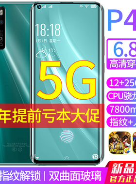 12+256g正品P40骁龙865智能游戏5g全网通手机安卓学生价千元以内