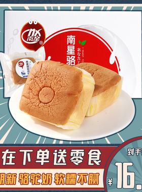 南星骆驼奶蛋糕整箱早餐营养健康学生网红点心休闲零食小吃小面包