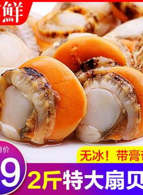 特大带黄新鲜扇贝肉超大海鲜水产生鲜蒜蓉粉丝大扇贝冷冻整箱包邮