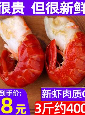【净重无冰衣】龙虾尾冷冻特级大号鲜活小龙虾500g生鲜麻辣生的
