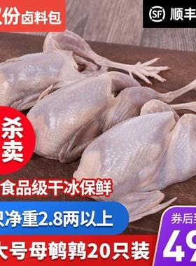 20只装大号母鹌鹑肉新鲜冷冻活体现杀现卖白条生鲜烤炸顺丰包邮