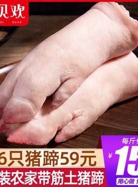 带筋猪蹄新鲜冷冻猪手猪脚猪爪红烧猪蹄炖猪蹄猪肉前蹄生鲜猪后腿