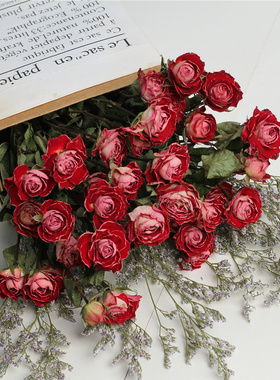 干花花束玫瑰花ins北欧风小清新家居蔷薇花花束办公摆设客厅装饰