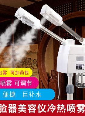 泰东冷热喷雾机双喷蒸脸器美容仪美容院专用补水热喷家用脸部水疗