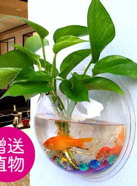 亚克力墙壁水培绿萝花盆瓶壁挂鱼缸墙面装饰品餐厅客厅背景墙花盆