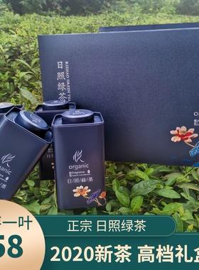 2020日照绿茶新茶豆香清香型茶叶特级一芽送礼高档礼盒装山东特产