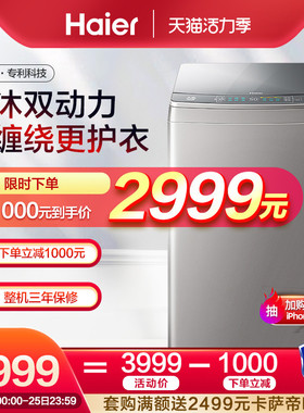 海尔天沐双动力10公斤kg直驱变频波轮洗衣机全自动 XQS100-BZ866