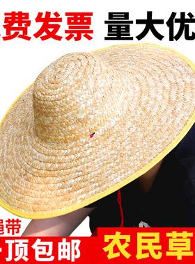 大草帽子农民男遮阳防晒夏季工地大沿沙滩户外太阳渔夫农用女草编