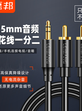 磊邦音频线一分二3.5mm转双莲花头rca插头手机台式机电脑接功放音箱通用低音炮线输出入转换线音响连接线1分2