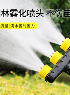 园林水枪浇水喷头农用浇菜神器浇水机雾化水泵喷灌浇花洒水枪灌溉